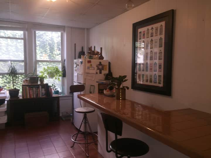 Bright Sunny Large 1-bedroom beautiful Park Slope