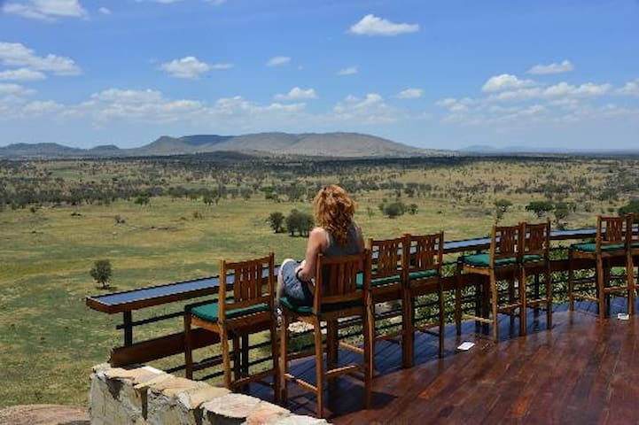 An Amazing Endless Plain Of Serengeti View.