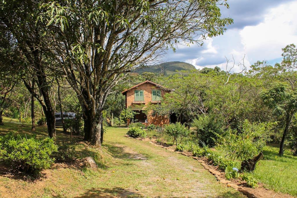 A casa é cercada por uma plantação de belas árvores frutíferas, nativas e flores, em 10.000 m2 de terra.