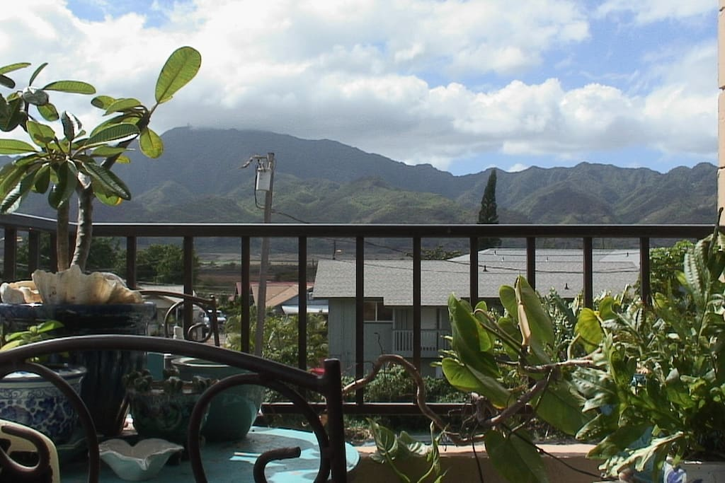 The mountain view from the porch is so Hawaii! I eat here!