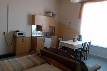 Großes Zimmer mit Miniküche - Kirchhain