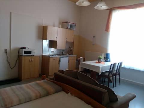 Großes Zimmer mit Miniküche