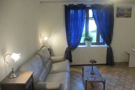 a huge and quiet flat in the countryside - SAINT RAMBERT D ALBON - Apartment