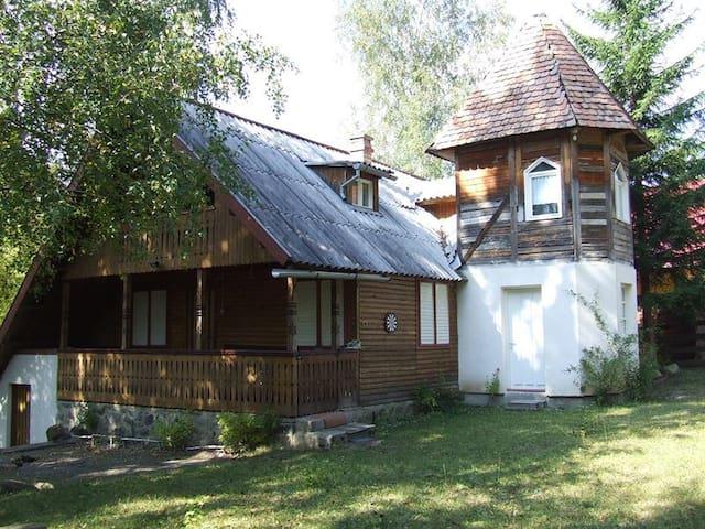 Fable like Tower Cabin in Transylvania - Șicasău - Casa de campo