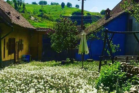 Casa Noah @ the Green House