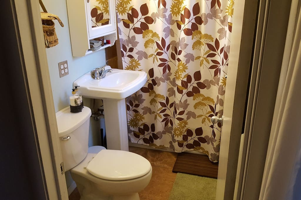 The shared downstairs bathroom