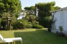 Villa Mare a Rosa Marina