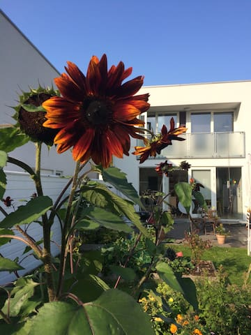 Moderne villa - 5 min. fra Fredensborg Slot! - Fredensborg - Villa
