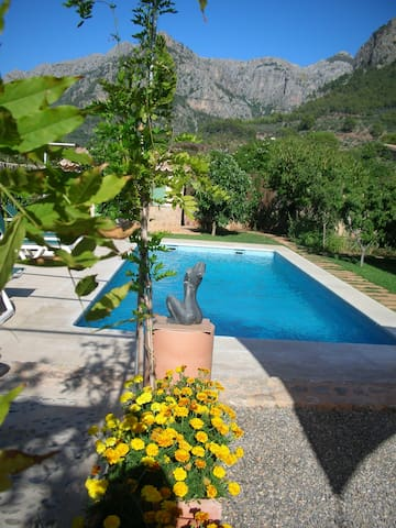 Newly built stone house in orchard with pool - Sóller - House