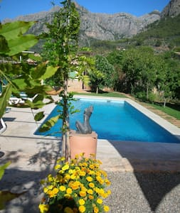 Newly built stone house in orchard with pool - Σόλερ