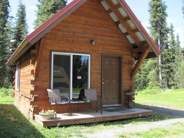Serenity Cabin - Soldotna - Skáli