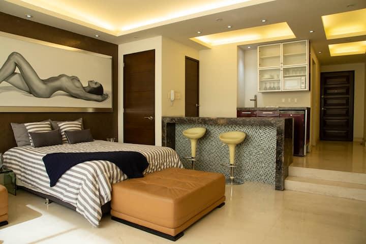 Lujoso apartamento tipo LOFT, ZONA CHAPULTEPEC