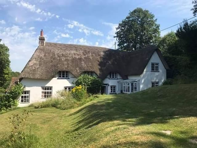 Thatched Cottage in the Dorset countryside