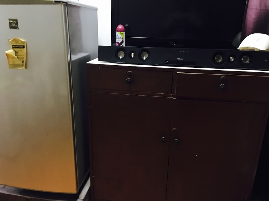 Television and Refrigerator