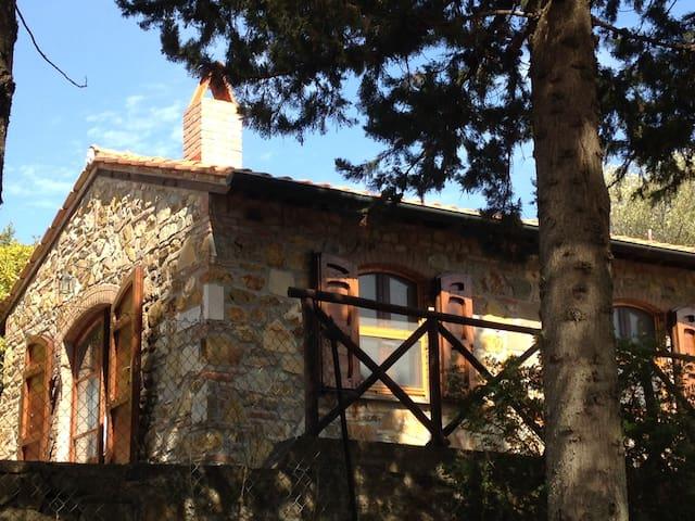 Cottage in Suvereto, Maremma - Tuscany
