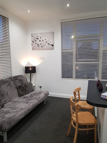1 BEDROOM FLAT, free WiFi, 5 minutes from tube PR3