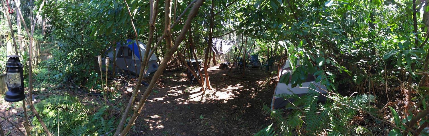 Le Camp de Kush Tours ~ Mill Creek ~ Everett