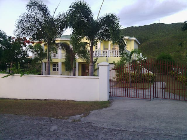 Jones Estate Buena Vida Downstairs