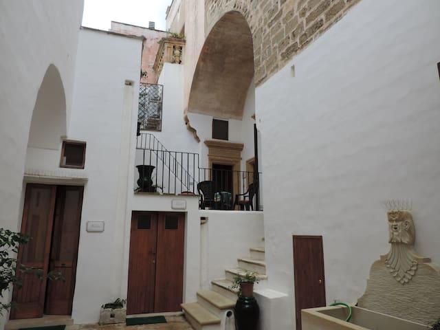 Patio and Terrazze,WiFi,AC,Tourist Advisor - Parabita - Appartement