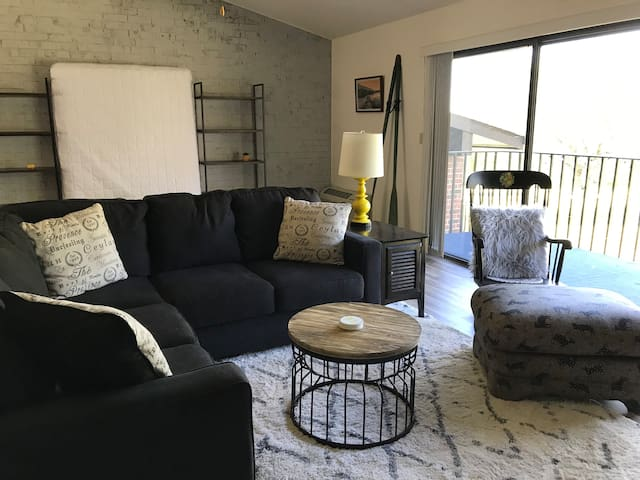 Updated, Cozy 1 Bedroom Condo in Lake Geneva, WI