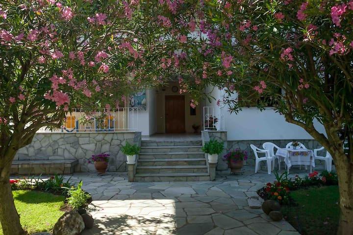 Joy's Beautiful House