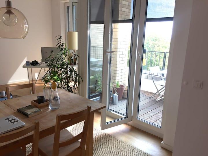 Modern new apartment