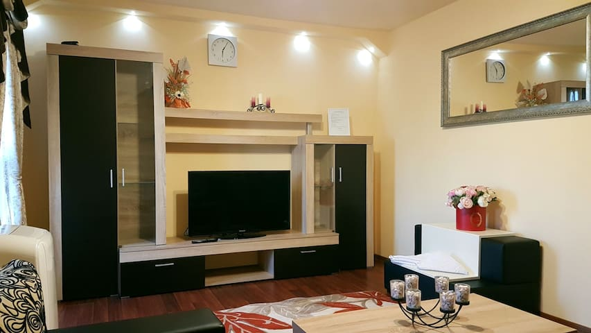Apartament Timisoara Town