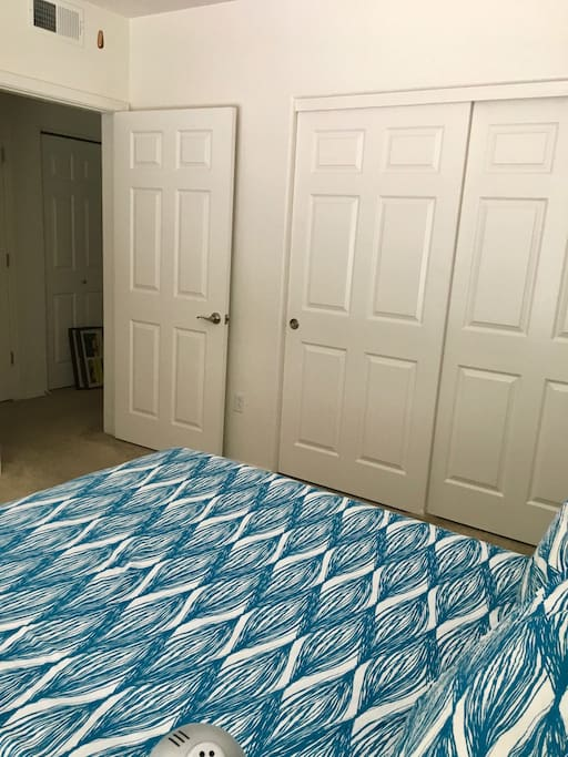 Bedroom entrance door and closet