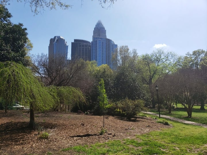 Great views of uptown Charlotte