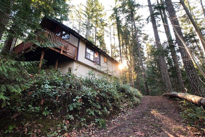 Cozy Cushman Cabin