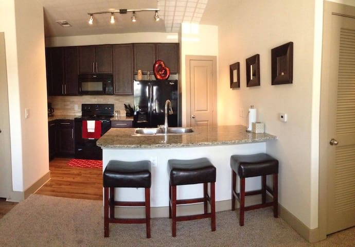 Private luxury apartment next to DELL - Round Rock - Daire