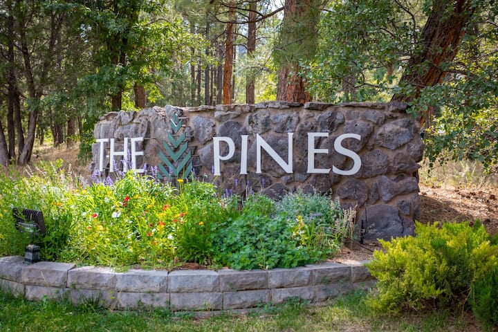 Home in the Pines