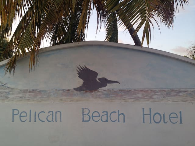 BEACH FRONT Boutique Hotel On North Caicos #4