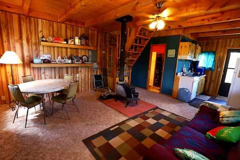 Cozy rustic cabin in South Fork - Great Views!