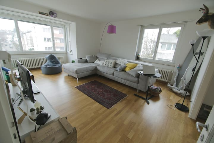 Single room bright apartment close to Basel World - Bazel - Appartement