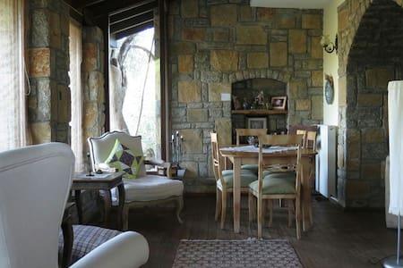 Modern Stone Village House - Bodrum - Talo