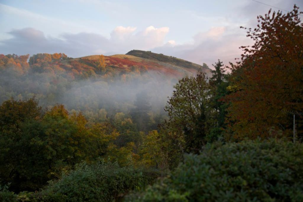 View from Llangollen Lodge mystical mornings