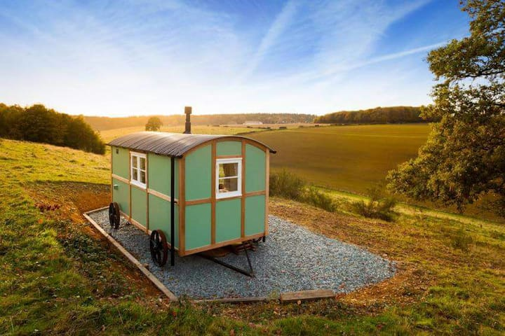 Wild Valley retreat shepherds hut - Elham - Hütte