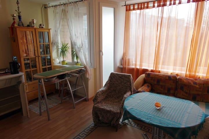 STUDIO APARTMENT CHEAP, COZY and GREAT LOCATION - Klaipėda