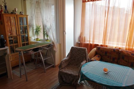 STUDIO APARTMENT CHEAP, COZY and GREAT LOCATION - Клайпеда