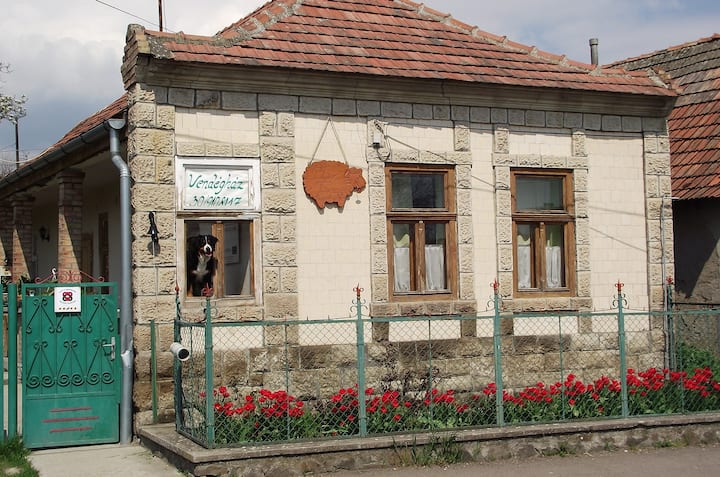 Állati jó Bari Tanya - Nest for animal enthusiasts