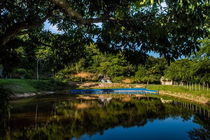 Vila Velha Flat's C2