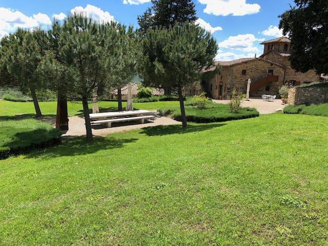 Holiday at the winery Poggio al Sole - Colombaia