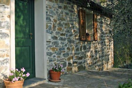 Holidays under the olive trees  - Casa Progallo - House