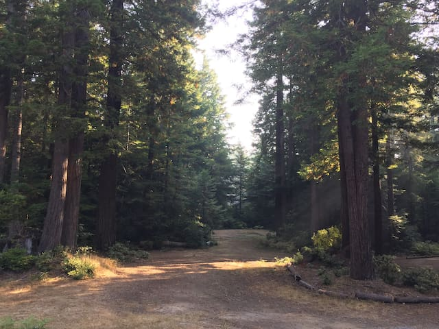 Camp in Your Tent or Park Your RV - Mendocino (1)