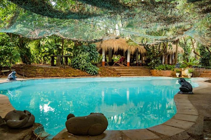 Jungle View  · Mangaal Farm stay standard room/breakfast 3 - Goa