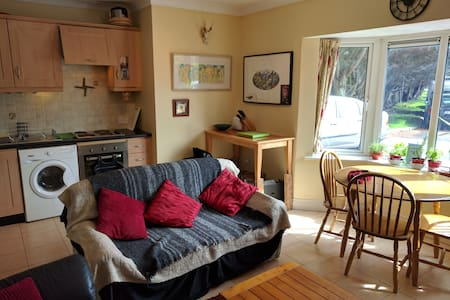 Ground Floor Claddagh Apartment - Galway