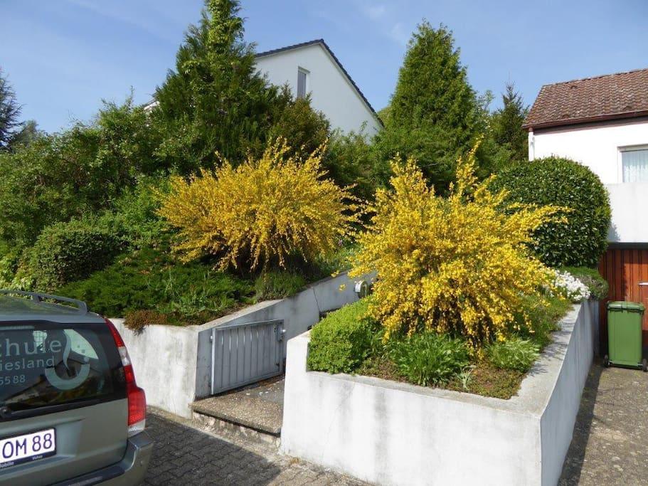 Vorgarten, Treppe