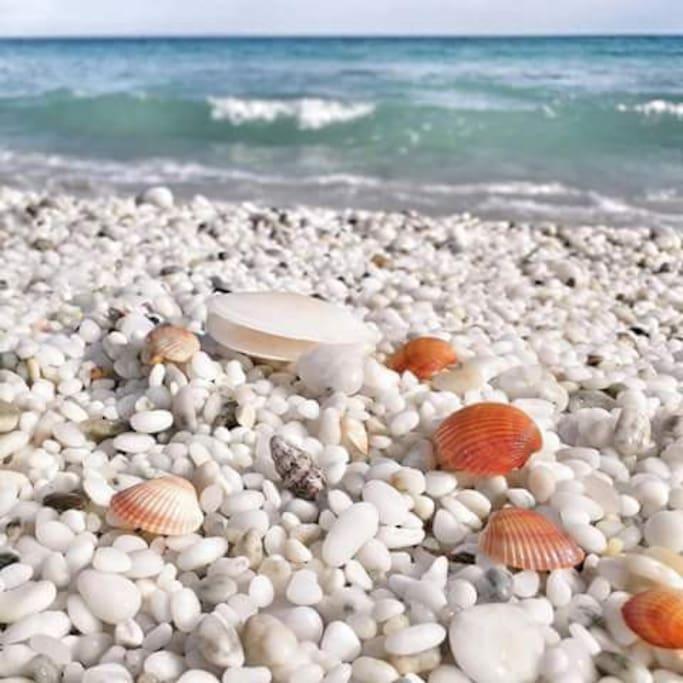 """spiaggia """"Le saline"""""""