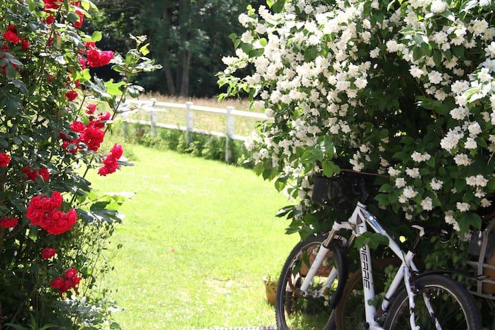 Cottage  indépendant avec terrasse, vélos